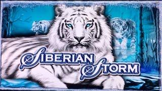 IGT Multigame Winner's Choice Good Win (s) - SIBERIAN STORM -  WOLF RUN -  CLEOPATRA - Slot Machine