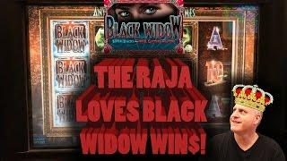 • The Raja Loves • Black Widow Wins •