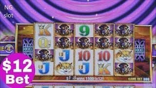 Buffalo Gold Slot Machine Bonus Won & Big Win Line Hit $12 Bet !• NEW Buffalo Gold Wonder 4 Tower•