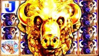 • THE MIGHTY BUFFALO GOLD | LIVE PLAY BONUS! • Slot Traveler