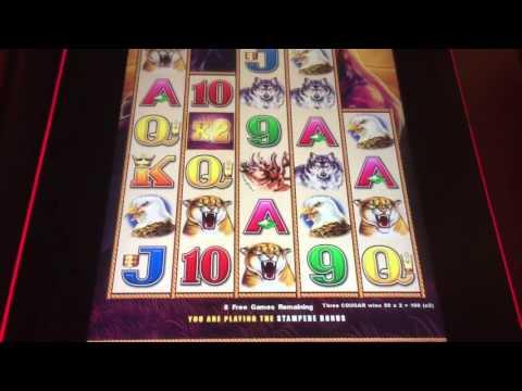 Aristocrat Buffalo Stampede Slot Machine Bonus *Nice Win*