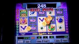 Count Money slot machine bonus win