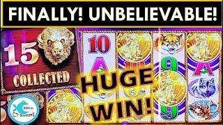IT FINALLY HAPPENED! ALL 15 HEADS ON SUPER FREE GAMES! BUFFALO GOLD SLOT MACHINE, TALL FORTUNES!