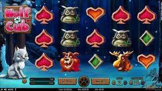 Wolf Cub Slot Features & Game Play - by NetEnt