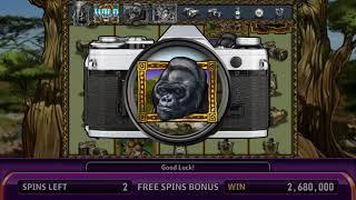 AFRICAN SAFARI Video Slot Casino Game with a PHOTO SAFARI FREE SPIN BONUS