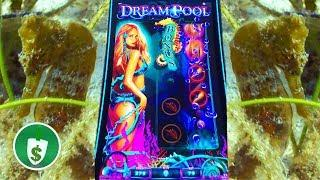 •  Dream Pool slot machine, bonus