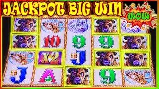 •  MEGA WIN JACKPOT! • WE DID IT ‼️ BUFFALO GOLD COIN SHOW $6 - $18 BET HIGH LIMIT SLOT •