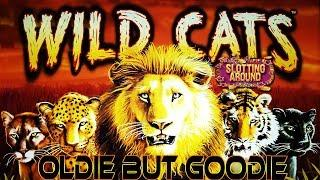 Wild Cats Slot machine! Oldie but Goodie $40 in Lets see what we can do!