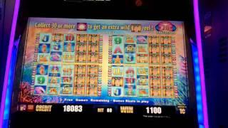 Aristocrat Technologies - More Pearls Slot Bonus