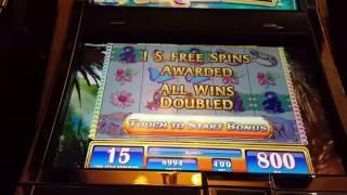 Max Bet! Gorilla Chief SUPER BIG WIN 15 Free Spins Bonus Round Video Slot Machine casino