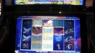 Whale Song Slot Machine Bonus-minor Progressive-max Bet