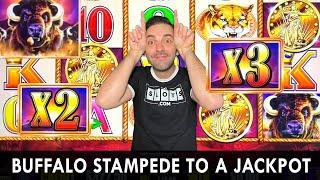 Buffalo Stampede to a Jackpot ⋆ Slots ⋆ Only Buffalo Slots at Choctaw Casino #ad