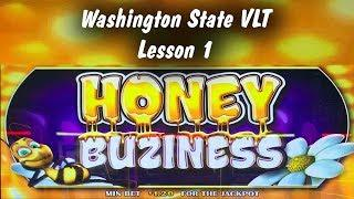 • Honey Buziness slot machine, Washington State VLT Lesson 1