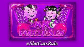 Sheng Shi Gui Fei • 88 Fortunes • The Slot Cats •