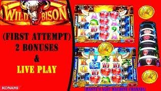 (First Attempt ) Wild Bison - 2 Bonuses and Live Play