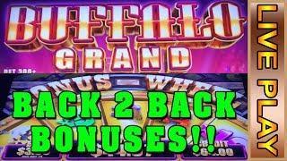 BUFFALO GRAND - BONUS AFTER BONUS! * 3 HEALTHY BONUSES CAUGHT LIVE in 15 minutes - LIVE PLAY
