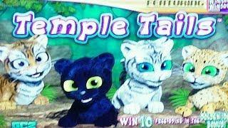 Aristocrat - *NEW*- Temple Tails - **First LIVE Look** - Slot Machine Bonus