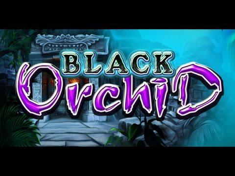 Black orchid casino game casino forum inurl inurl register