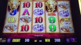 Buffalo Gold high limit $18 bet w Slot Traveler bonus win