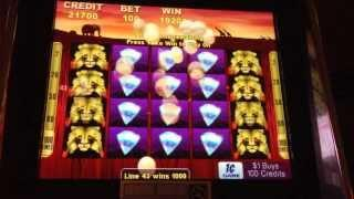 ***HUGE WIN!!***  Aristocrat - 100 Lions amazing bonus!