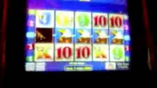 $1200 JACKPOT on Wild Cougar -  25c Aristocrat Slot machine