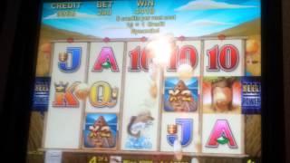 Beaver bucks slot machine