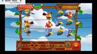 iHABA Ruffled Up Slot Game •ibet6888.com