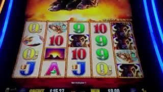 Buffalo Gold Live Play Double or Nothing Slot Machine - Viewer Request Part 4