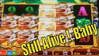 •STILL ALIVE !•LAST SPIN SPECIAL #6•GOLD STACK/DRAGON TREASURE/WHALES OF CASH Slot•彡栗