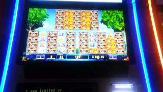 GREAT Slot Wins! ALL 100x and UP!