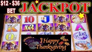 • Happy Thanksgiving • • JACKPOT HANDPAY • BUFFALO GOLD $12 - $36 MAX BET HIGH LIMIT SLOT MACHINE