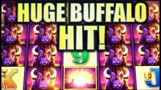 •BUFFALO MANIA! HUGE BIG WIN• WONDER 4, STAMPEDE POWER & RUMBLE RUMBLE | Slot Machine Bonus