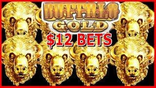 • $12 MAX Bet on BUFFALO GOLD • FREE Games Galore•