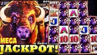 •CRAZY WINS JACKPOTS!!!• BEST of BUFFALO STAMPEDE slot machine WINS!