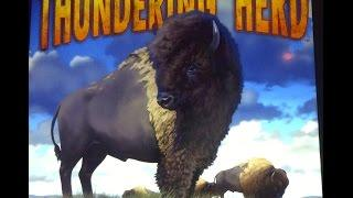 Thundering Herd Slot Machine Bonus