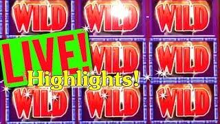 • LIVE PLAY HIGHLIGHTS • BIG WINS ON WOLF RUN AND BUFFALO GOLD SLOT MACHINES