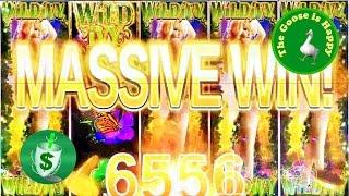++NEW WILD IVY slot machine, 2 DBG sessions, Happy Goose Big Win