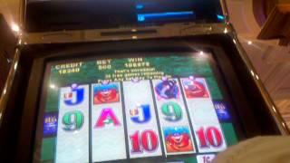 Whales of Cash Slot machine Huge Win  Handpay Max bet