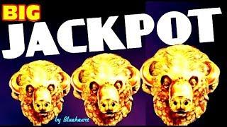 • WOW! •  BUFFALO GOLD slot machine JACKPOT HANDPAY WIN! (15 Gold heads collected)