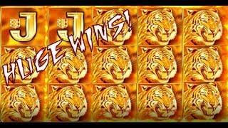 New slot Game 2017! Huge wins! Back to back bonuses! FLAMIN' Tiger