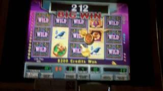 Count Money Mystery Wild Slot Bonus - WMS