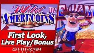 Wild Ameri'Coins Slot - First Look, New Clone of Wild Lepre'Coins