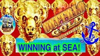 WINNING CASH $$$ from the BUFFALO GOLD MACHINE ON A CRUISE SHIP•WITH THE BOYZ