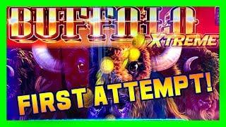 BUFFALO EXTREME GOLD • FIRST IMPRESSIONS • BIG WINS ON A CLASS 2 MACHINE? • LIVE CASINO PLAY