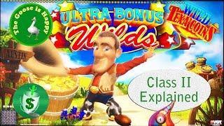 • Wild Texa'Coins slot machine, Happy Goose, Class II Explained