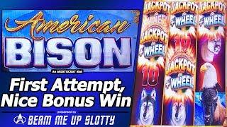 American Bison Slot - Live Play and Nice Free Spins Bonus Win