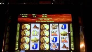 Wild Cats Slot Bonus - Aristocrat