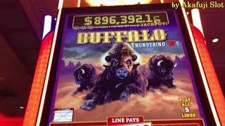 Better than Jackpot•BUFFALO THUNDERING 7s $1 Slot Bet $5(Free Play)/ Fortune King DX, Timber Wolf DX