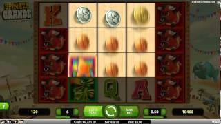 Spiñata Grande Slot - William Hill Games