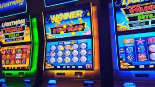 *GRAND JACKPOT* $10,000+ LIGHTNING LINK - INCREDIBLE WIN SIGHTING!!!